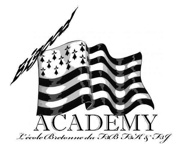 F3BIGOUD ACADEMY - Page 3 Bigood10