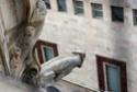 Prenons un peu d'Italie (Gênes - Turin - Milan) - Page 5 Img_6414