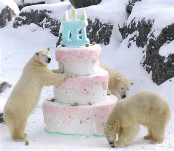 Bon anniversaire Gana :) 11330510