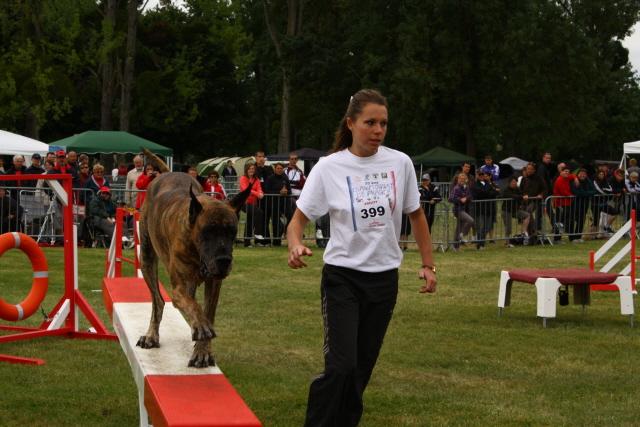 Championnat de France d'Agility Dog_al10