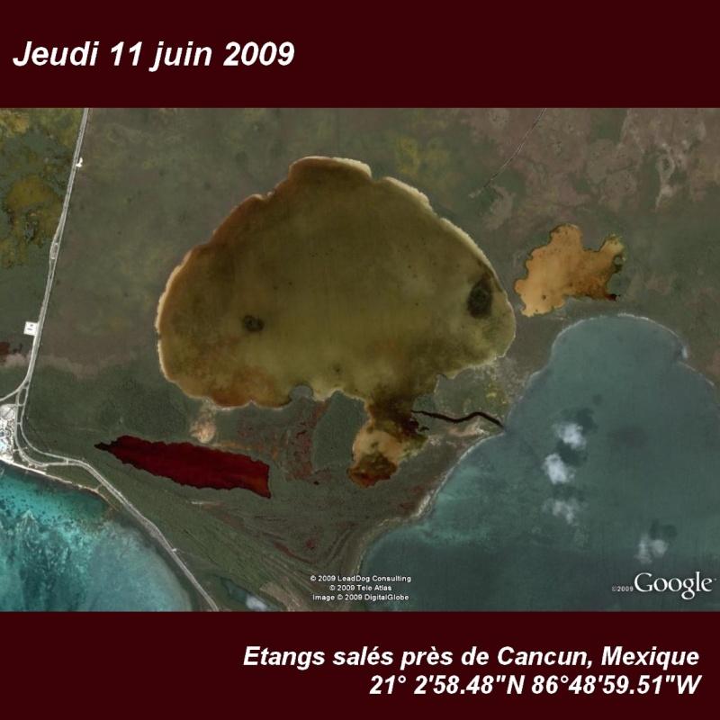 Juin 2009 (éphéméride) Cancun10