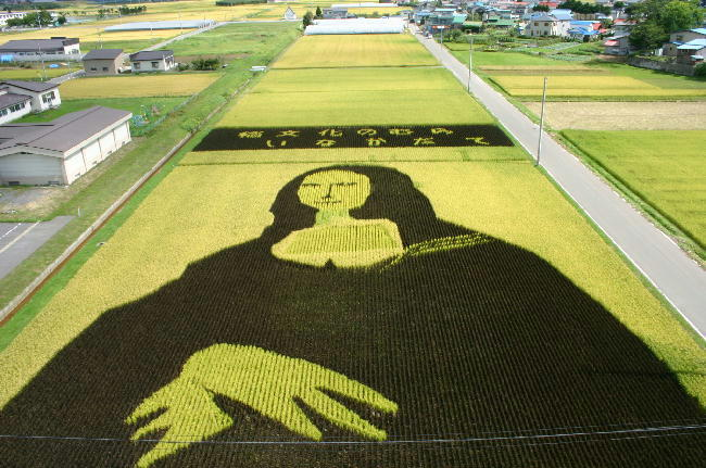 [Japon] - Dessins culture de riz Inakadate Monari11