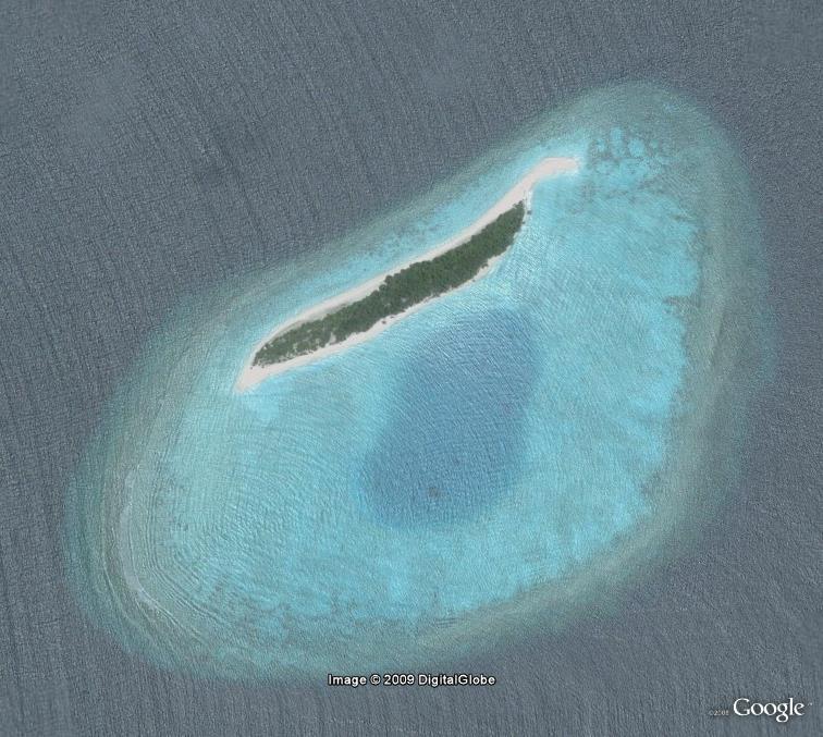 Le centre du monde : actualité au jour le jour - Page 40 Seyche10