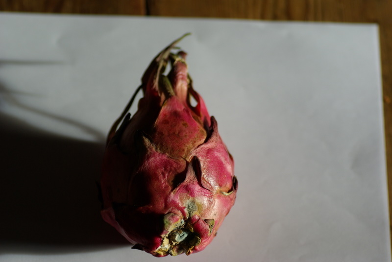 Hylocereus undatus, fruit du dragon- Pitaya ou Pitahaya Imgp2720
