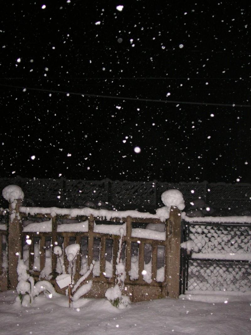 L'Orléanais sous la neige en novembre... Neige_11