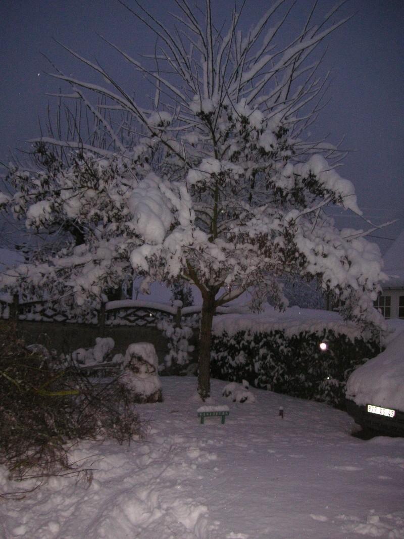 L'Orléanais sous la neige en novembre... Neige_13