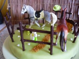 cheval, zèbre et licorne - Page 5 P1020611