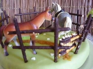 cheval, zèbre et licorne - Page 5 P1020612