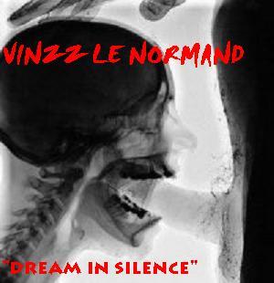 live 1h dub-drum'n bass jungle -VINZZ LE NORMAND Dream_10