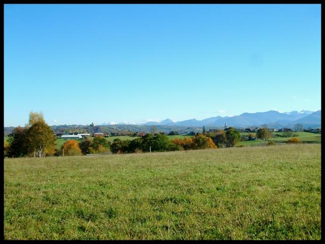 Belles couleurs d'automne Dscf0111