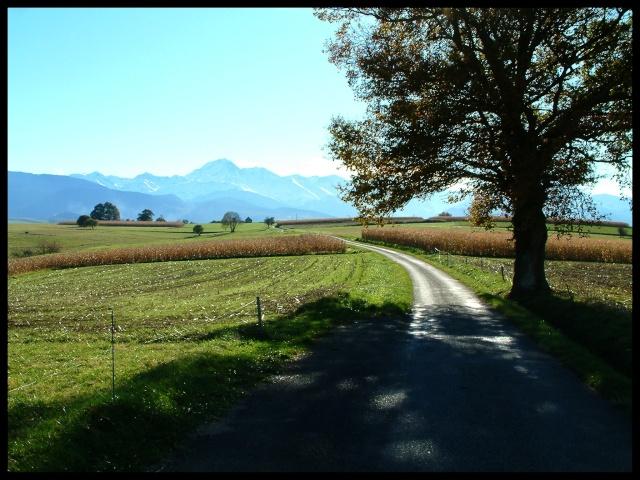 Belles couleurs d'automne Dscf0119