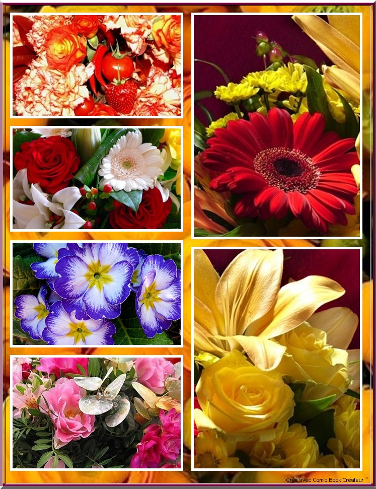 De superbes fleurs en BD 210