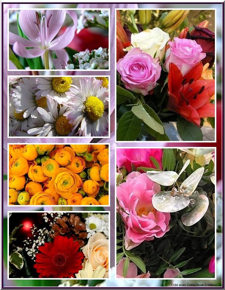 De superbes fleurs en BD 310