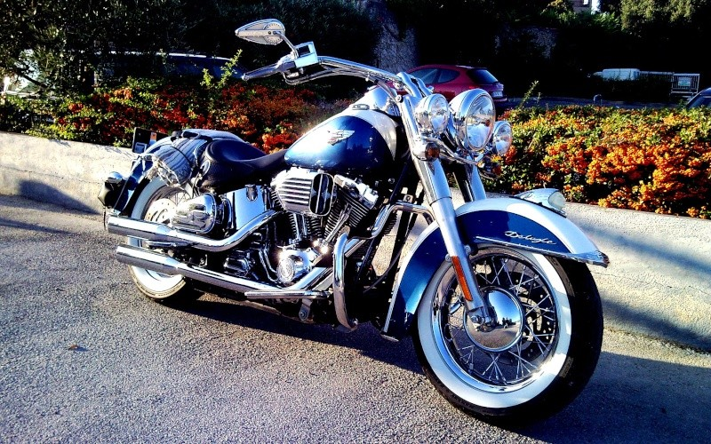 NOUVELLE HARLEY FORTY EIGHT !!! waaouuuwwwww !!! Snc00033