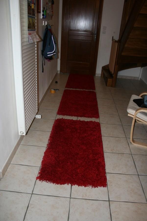 vos avis sur les tapis de l'entrée Tapis_11