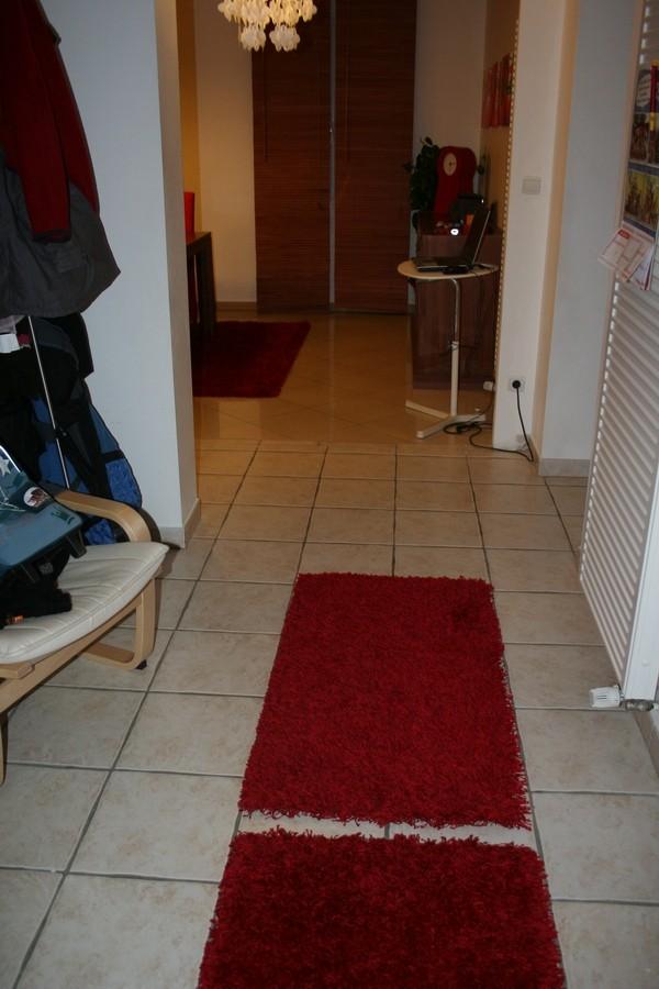 vos avis sur les tapis de l'entrée Tapis_12