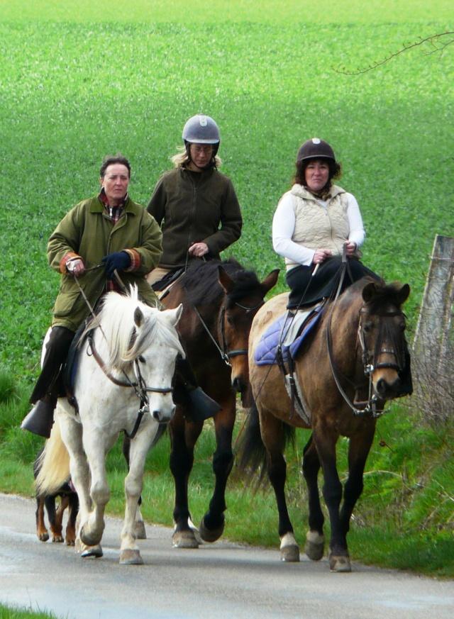 Votre style (ou dégaine) à cheval ? P1010910