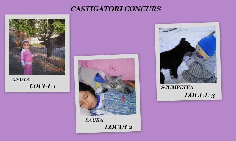 CASTIGATORII CONCURSULUI Deskto11