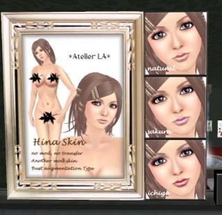 Petites boutiques de skins - Page 2 Ala_0010