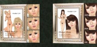 Petites boutiques de skins - Page 2 Ala_0012