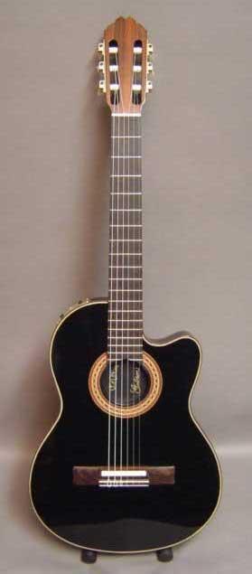 GIPSON Gibson10