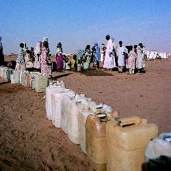 La ONU pide ayuda para responder a las necesidades más urgentes en Darfur Fotono10