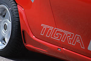 Fake für meinen Tigra Ti100011