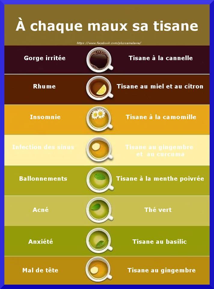 Les tisanes médicaments naturels  Armell11