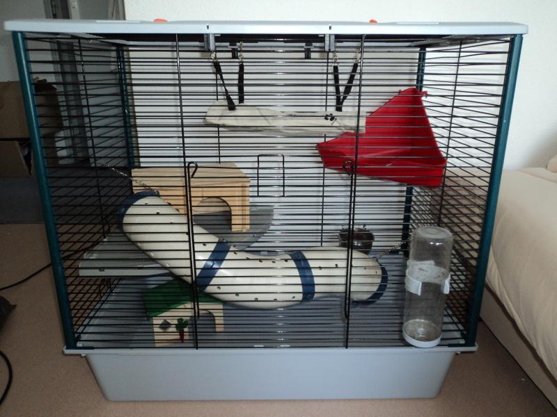 Vends cage furet plus ferplast (33) Dsc00412