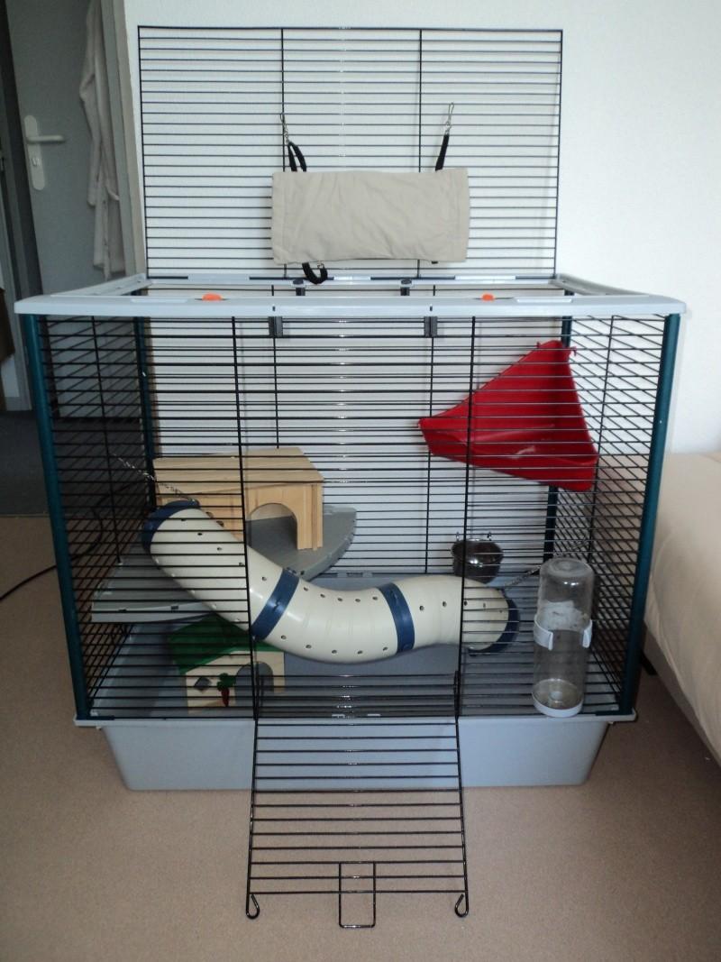 Vends cage furet plus ferplast (33) Dsc00413