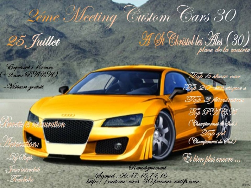 25 juillet 2 éme  meeting custom cars 30 Fly12
