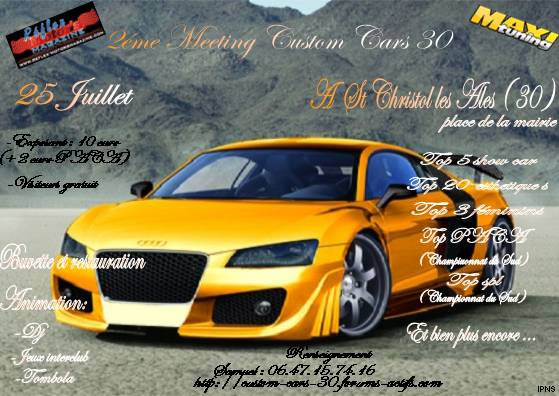 25 juillet 2 éme  meeting custom cars 30 Fly15