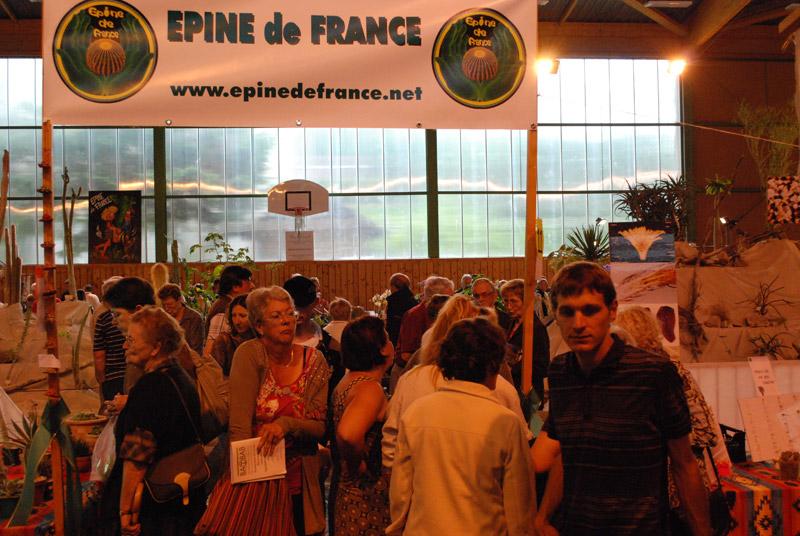 Le topic unique en photos de la Saint-Hip'aux cactus 2010 13-06-12