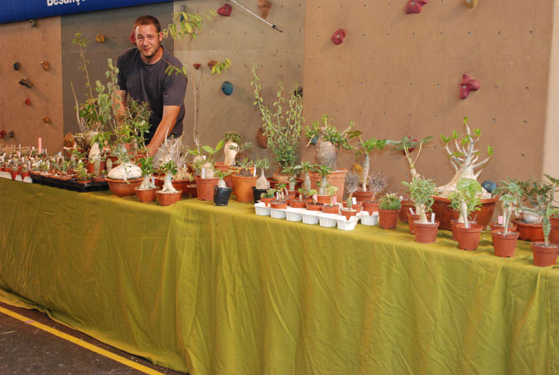 Le topic unique en photos de la Saint-Hip'aux cactus 2010 Brende10