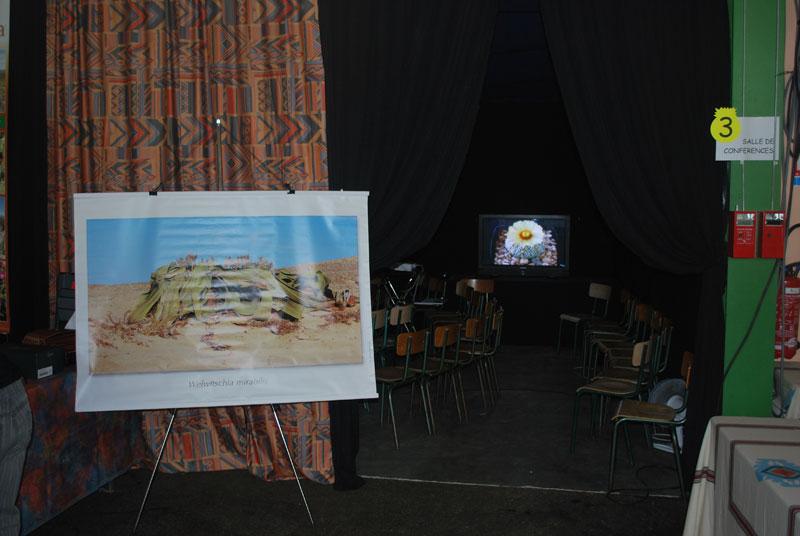 Le topic unique en photos de la Saint-Hip'aux cactus 2010 Dsc_0230