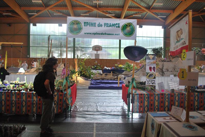 Le topic unique en photos de la Saint-Hip'aux cactus 2010 Edf2610