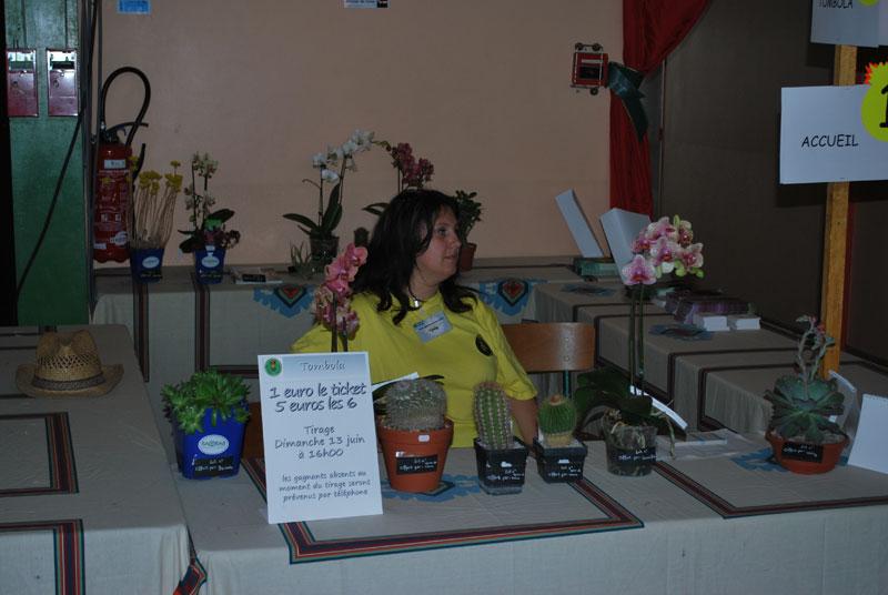 Le topic unique en photos de la Saint-Hip'aux cactus 2010 Edf2710