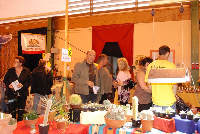 Le topic unique en photos de la Saint-Hip'aux cactus 2010 Edf3110