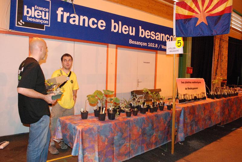 Le topic unique en photos de la Saint-Hip'aux cactus 2010 Yannou10