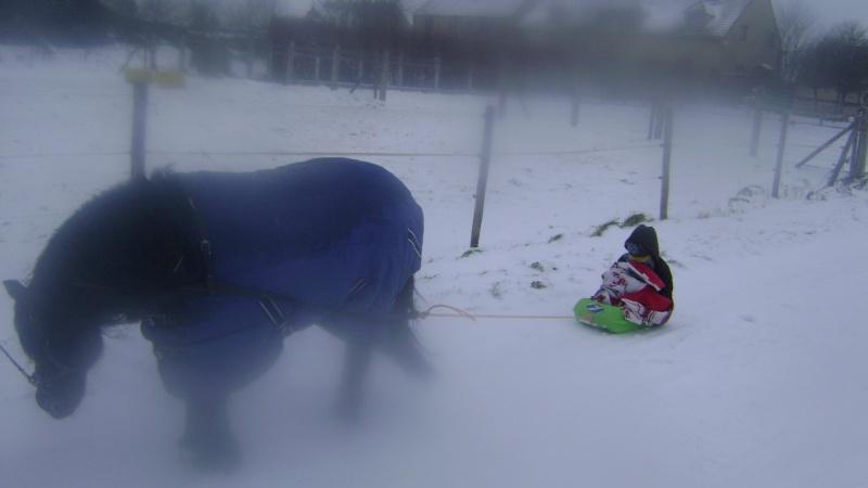 Les joies de la neige, et les glissades par la même occasion Dacemb10