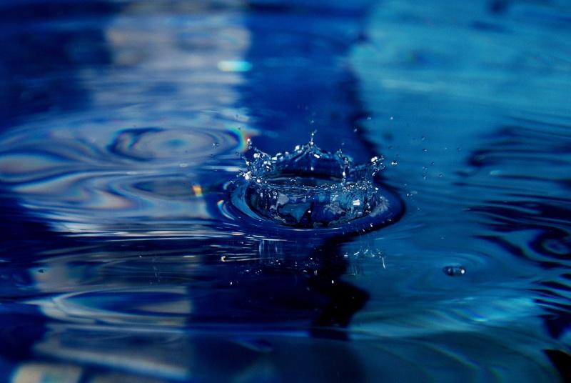 FIL ROUGE: Quelques gouttes d'eau pour un océan  - Page 15 Img06610
