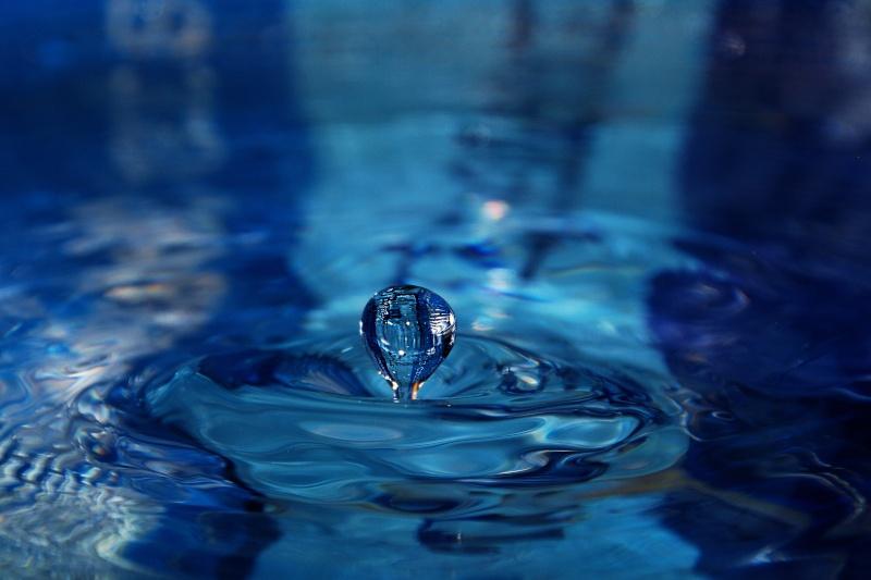 FIL ROUGE: Quelques gouttes d'eau pour un océan  - Page 15 Img09410