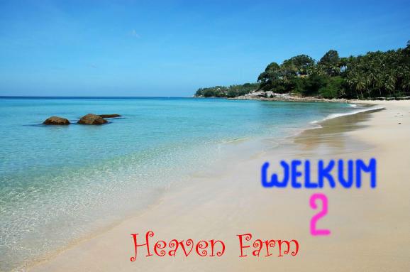 ~~~ A World Called HEAVEN FARM ~~~