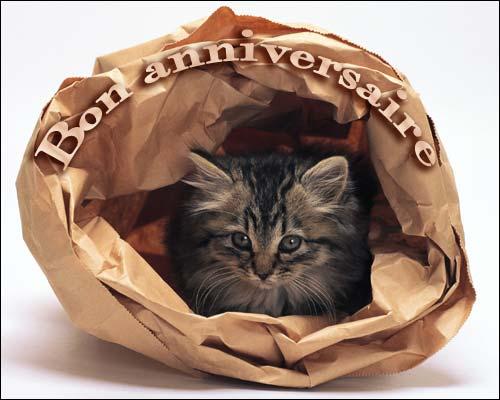 [TOPIC UNIQUE] Joyeux anniversaire ! - Page 4 Le_sac10