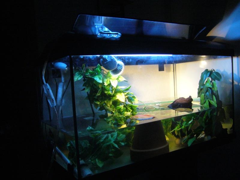 l'aqua de Franklin et Lolita P1080011