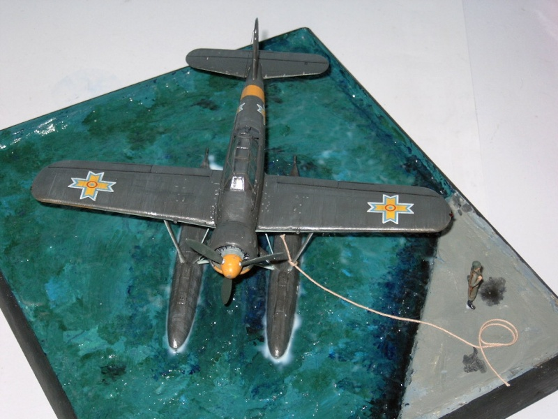 sur le bord de la mer noire il y avait un arado Arado_11
