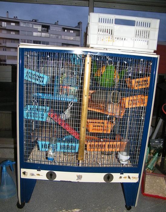 """Vends grande cage """"1/2 Chinchilla turquoise"""" Apras11"""