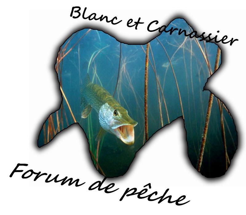 Blanc et Carnassier, Forum de Pêche