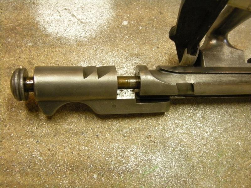 fusil gras Dscn1311