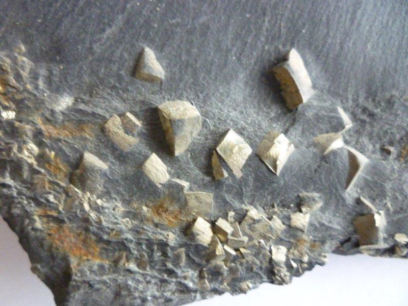 ( minéral)ardoise et pyrite Ardois12